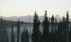 Dunn Peak