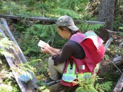 Simone Levesque taking notes on the Forest
