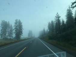 Foggy drives to work